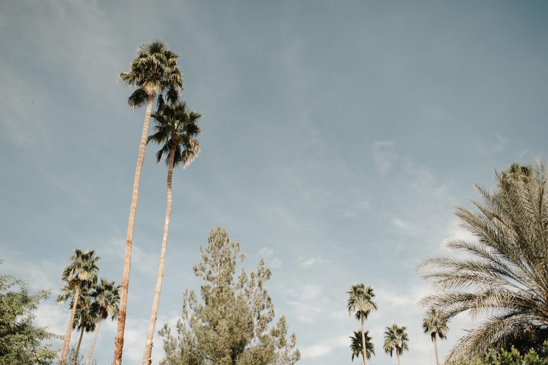 Sydney & Alex | Parker, Palm Springs » Carina Skrobecki
