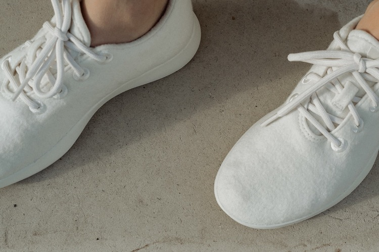 Allbirds, the world's comfiest shoes
