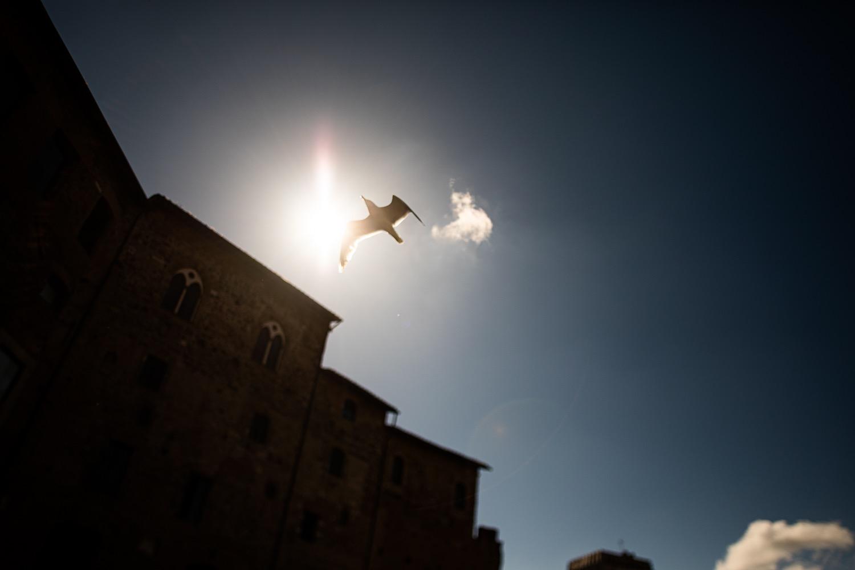 featured - Foto prematrimoniali nella Roma di Traiano