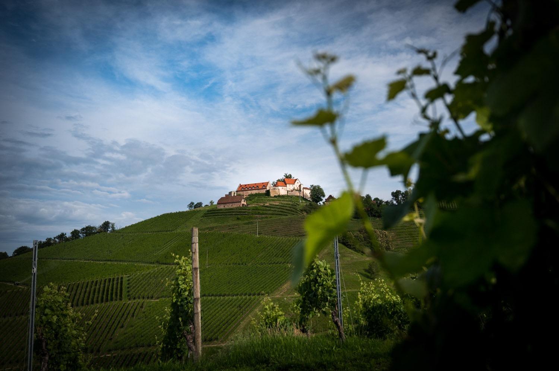Schloss Staufenberg 2